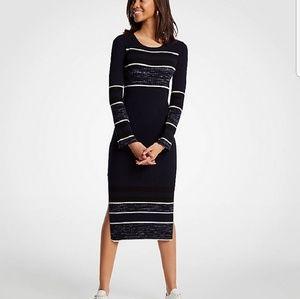NWT Ann Taylor Spacedye Striped Sweater Dress